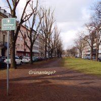 Willy-Brand-Anlage/Grünanlage?, Blick zur Fürther Freiheit, zwischen Königswarterstraße und Rudolf-Breitscheid-Straße, Foto P. Frank.